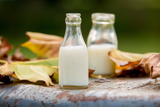 The Drunken Nanny • What's all the fuss about Goats Milk?